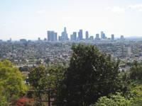 Highlight for Album: Los Angeles Spring Feb 2007