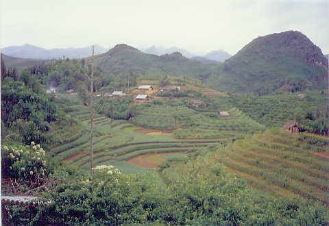 near Bac Ha