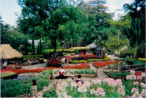 Mae Fa Luang Garden Doi Tung